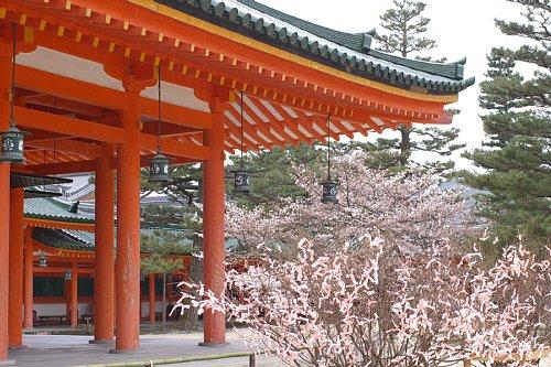 sakura-heian