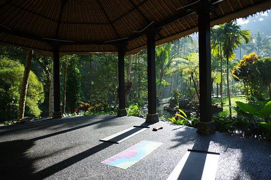 bali-yoga13