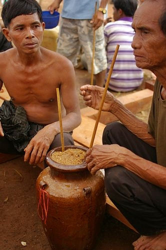 cambodia2013sake10