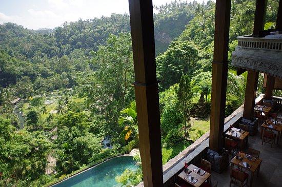 Bali yoga15