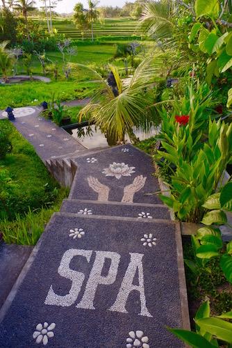 Bali2015 08 41