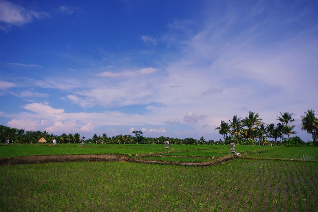 Bali warung 00045