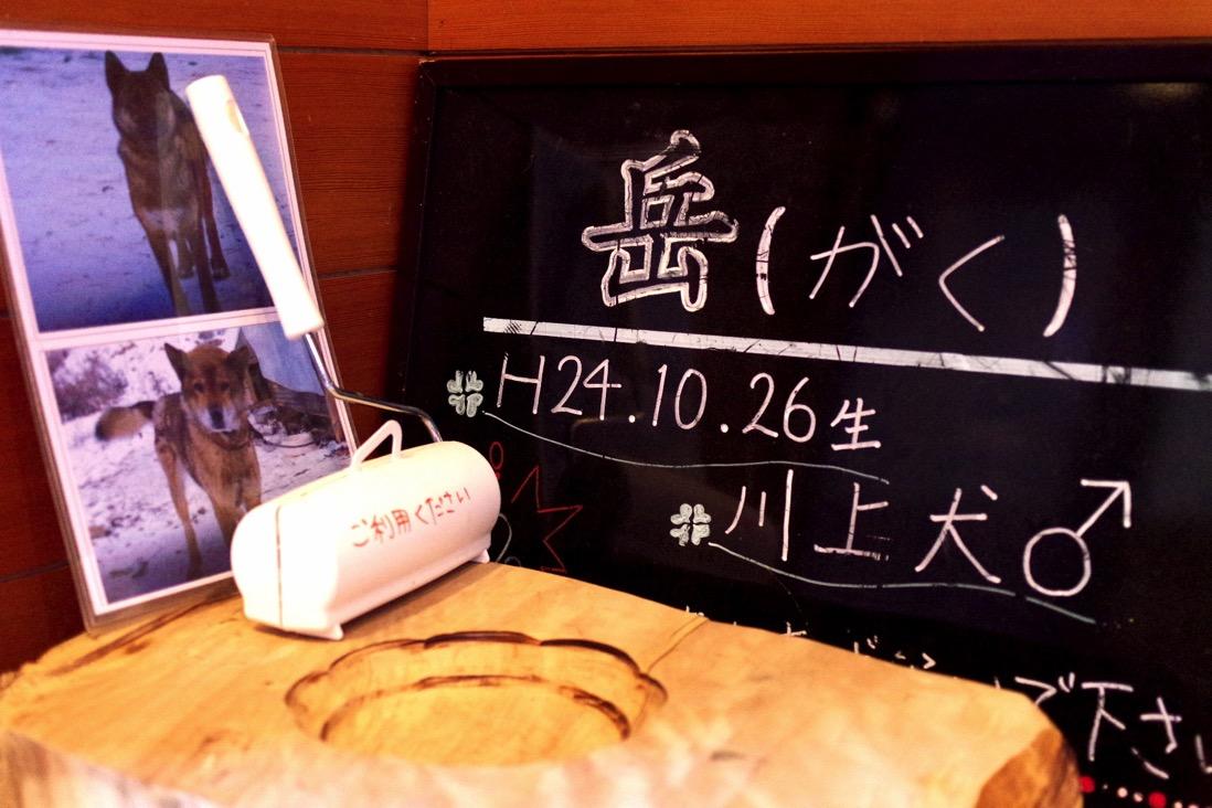 Teshirosawa00034