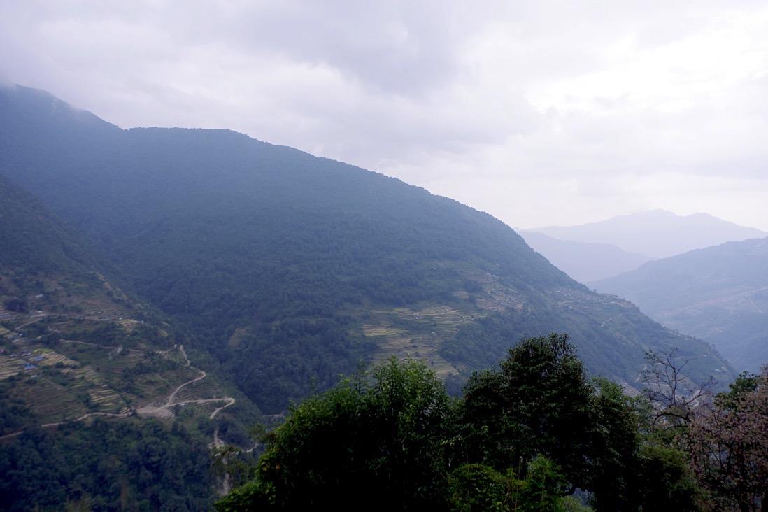 Nepal201800103