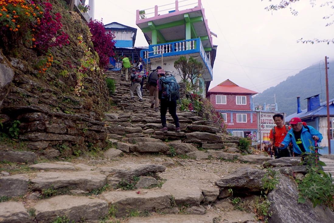 Nepal201800106