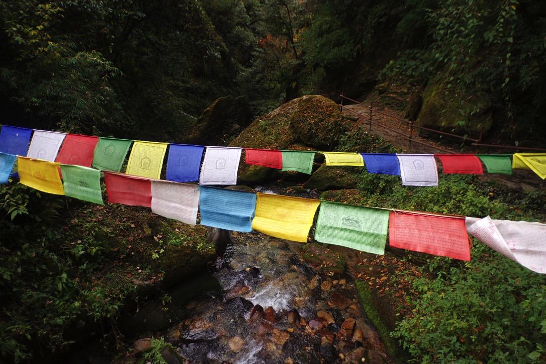 Nepal201800130