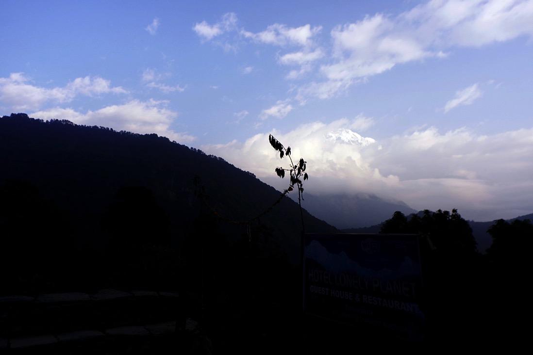 Nepal201800238